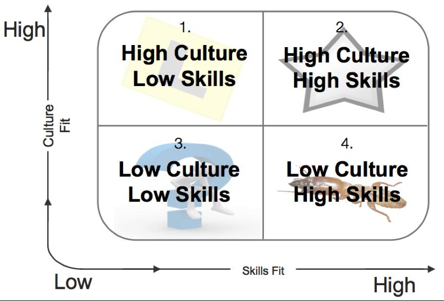 Culture Skills Matrix